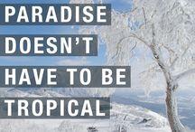Ski Quotes
