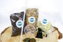 Things to make a plant terrarium