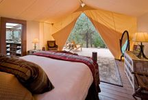 I Should Be Glamping