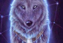Cão lobo