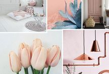 INSPIRATION COULEURS COLLECTION SAMO
