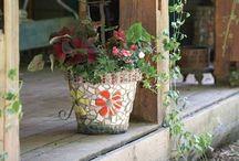 great gardening ideas / by Sharon Graham