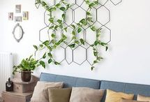 Frames and vines
