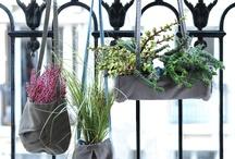 tuin & balkon
