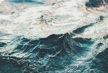 i_havet
