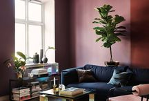 interior and colour
