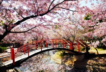 JAPANー日本