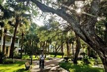 Florida Trip / by Kristen Dickerson