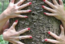 Aktion I love Trees / 50 Millionen Bäume sind gepflanzt und wir machen weiter! Unterstütze auch Du die Kampagne der Umweltstiftung Fondation Yves Rocher zum Weltklimagipfel 2015. Umarme Deinen Lieblingsbaum, lass dich fotografieren und lade das Foto bei http://www.ilovetrees.eu/en/ hoch. Für jedes Foto, das bis zum 30.09.2015 hochgeladen wird pflanzt die Umweltstiftung einen Baum. Auch wir haben Bäume umarmt und es sind tolle Bilder entstanden... #ILoveTreeHugs