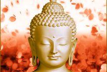 Buddha / Elämän viisauksia...