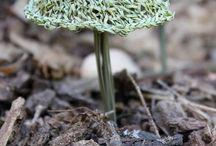 strikkede/hæklede svampeknit/crochet fungi/mushrooms / strikkede hæklede svampe