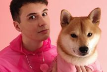 `♡ dan and phil / soft and neat
