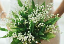 boda verde y blanco