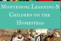 17_Homestead - Kids Play/School