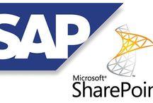 SAP / by Henry Meneses