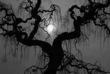 Baum mit Mond