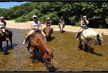 Horseback Riding @ Huzzah Valley