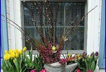 Spring in the window - Tavasz az ablakban