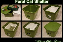 Feral Cat Shelters / Build your own or buy.  Remember the outdoor cats.  See also: http://www.alleycat.org/ShelterGallery