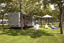 CAMPING area / There are 1,089 pitches of varying sizes (75-120 sq.m) all with electricity (7.5-10A). A wonderful selection of trees, palms and shrubs provide natural shade and an ideal space for children to play.