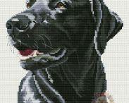 pes černý