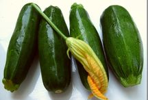 Squash for the Summer / Yellow Summer Squash, Zucchini, Yellow Crookneck, Pattypan, Tromboncino, Cousa
