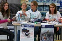 2015 ZBIÓRKA KARMY W AUCHAN- KRASNE- ŚWIATOWY TYDZIEŃ ZWIERZĄT / Z okazji Światowego Tygodnia Zwierząt  Fundacja Felineus razem z hipermarketem AUCHAN-Krasne zorganizowała zbiórkę karmy, akcesoriów, środków czystości i artykułów higienicznych dla podopiecznych  Fundacji.