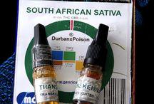 Durban Poison ZA (Official) Medical Cannabis