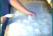Making felt from wool