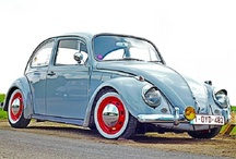B for Beetle