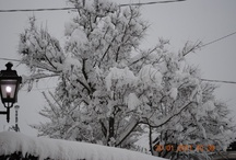 snow / snow in cowntry, some time ago....