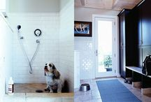 Dog Bath / by Anna Quilting & Wool