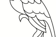 papağan
