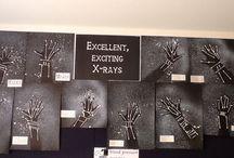 Creative area display
