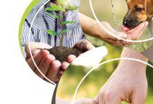 CSR / Our CSR activities