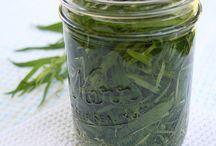 Herbaciousness