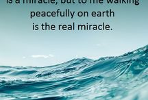 quotes meditation