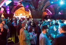 2015 Brighton Fringe Audiences