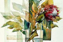 Suikerbosse/protea laurifolia