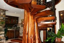 Tree Trunk in House