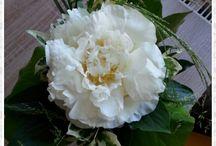 Floristin....meine andere Ader
