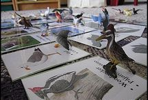 Unit: Birds / by Seemi @ Trillium Montessori