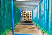 Eco Products & Building Materials