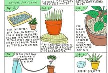 Plants... / by Molly