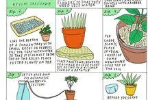 gardening//GOgreen