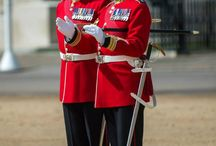 Household Division / The Household Division consists of five Foot Guards and two Mounted Regiments.