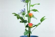 Ikebana art, Floral Designs