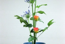 Ikebana art, Floral Designs / by Jarmila Kašparová