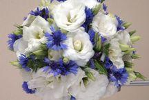 kwiaty / ...
