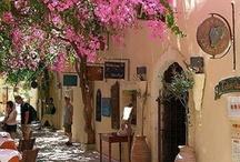 Beautiful flowers in Greece